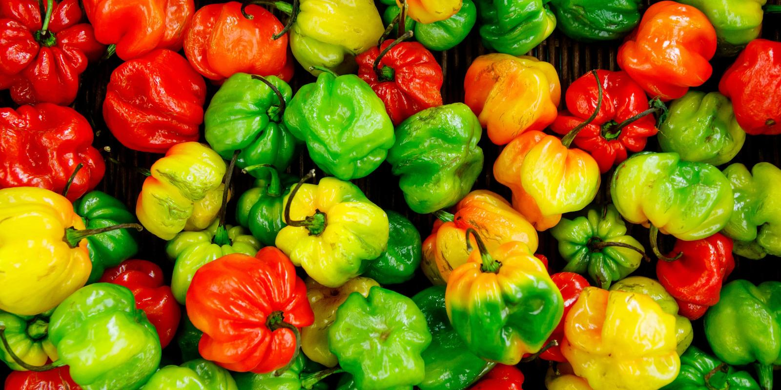 A picture of red, green and yellow bell peppers.